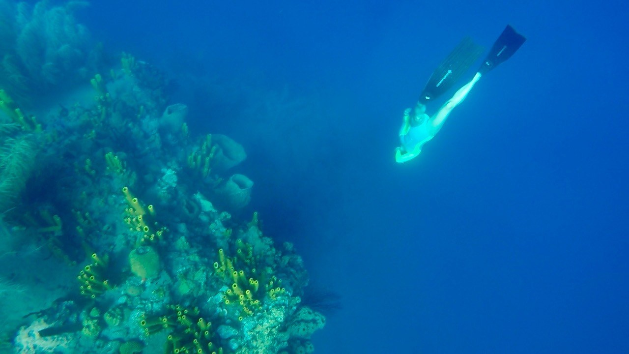 PURE adventure: Discovering freediving!