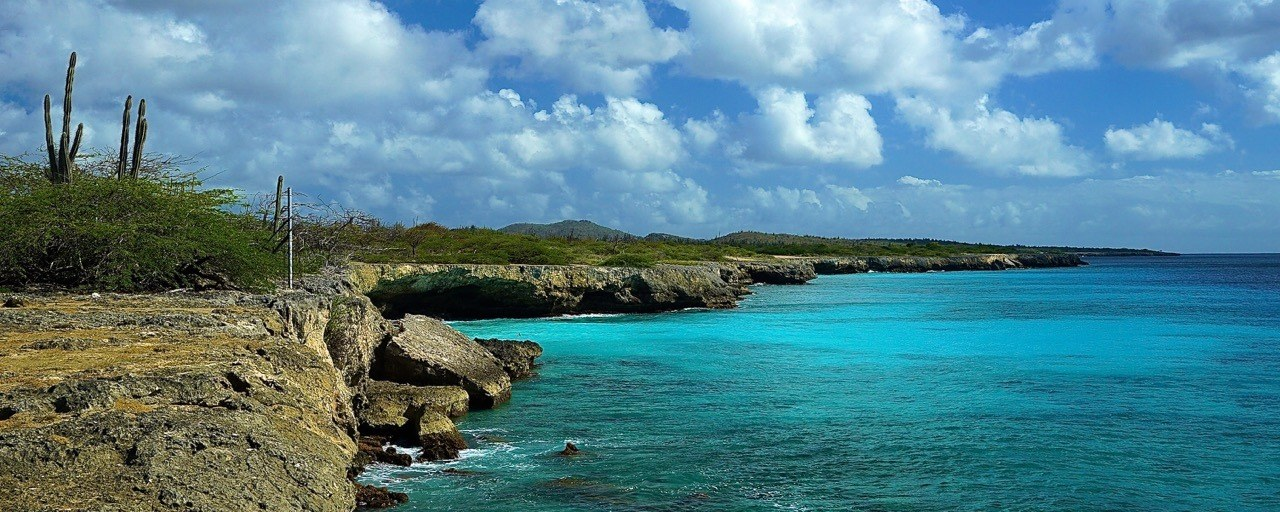 Bonaire: a (free)divers paradise in the Caribbean